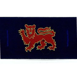 Surrey Lion Badge