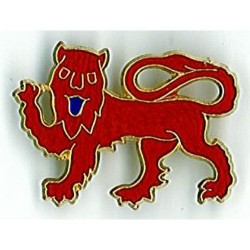 Surrey County Metal Badge