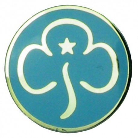 Rainbow Metal Promise Badge The Scout And Guide Shop