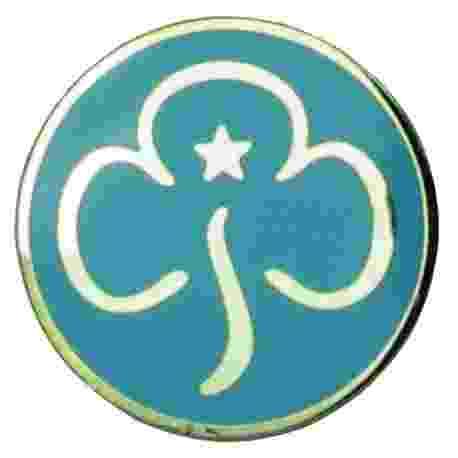Rainbow Metal Promise Badge