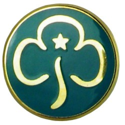 Senior Section Promise Badge