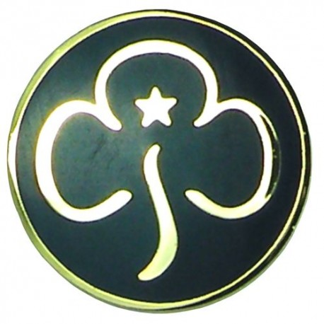 Guide Leader Promise Badge