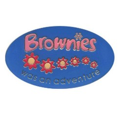 Brownie Leaving Pin Badge