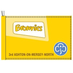 Brownie Flags and Banner