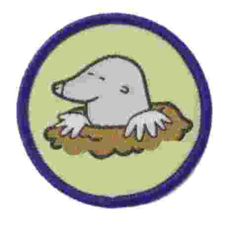 Brownie Six Badge - Mole