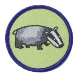 Brownie Six Badge - Badger