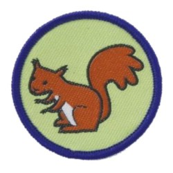 Brownie Six Badge - Squirrel