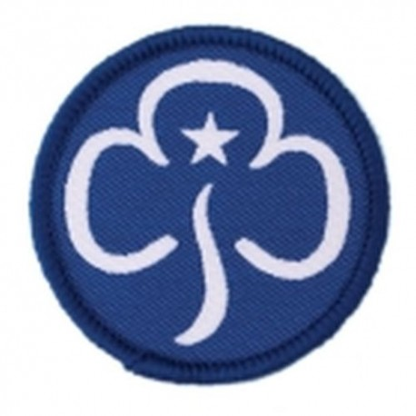 Guide Woven Section Badge