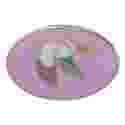 Guide Patrol Emblems - Pelican