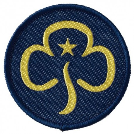 """Leader Woven """"Section"""" Badge"""