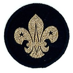 Air Scout Beret Badge