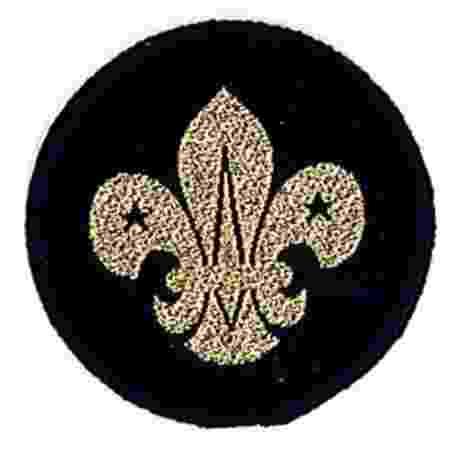 Air Scout Beret Badge
