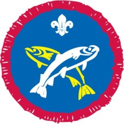 Scout Activity Angler