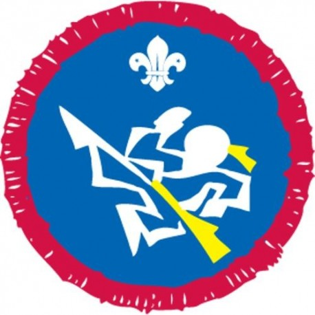 Scout Activity Martial Arts