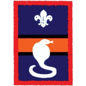 Patrol Badge Cobra