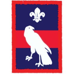 Patrol Badge Hawk