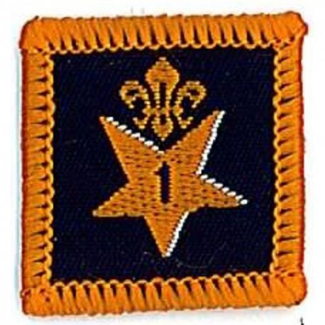 Participation Badge 1