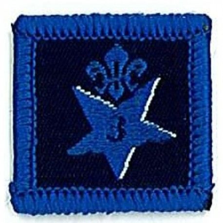 Participation Badge 3