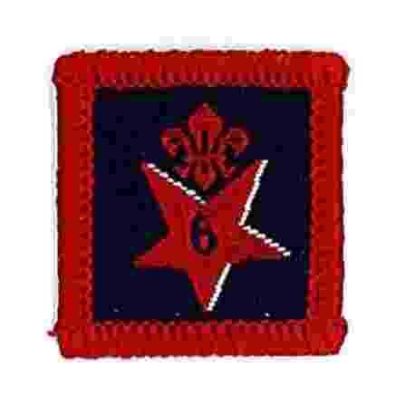 Participation Badge 6