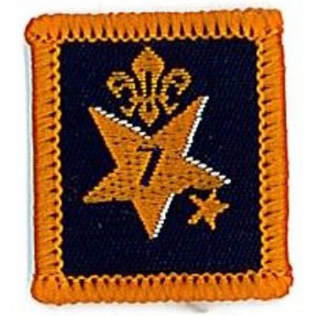 Participation Badge 7