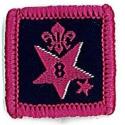 Participation Badge 8