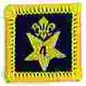 Participation Badge 4