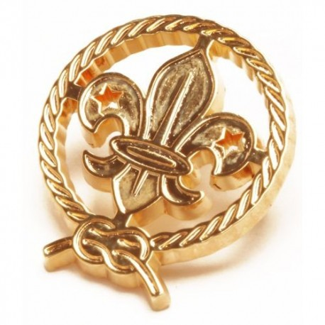 World Scout Cut Out Pin Badge