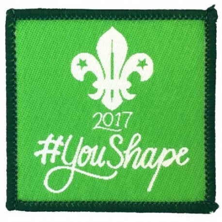 2017 You Shape Cubs Woven Badge