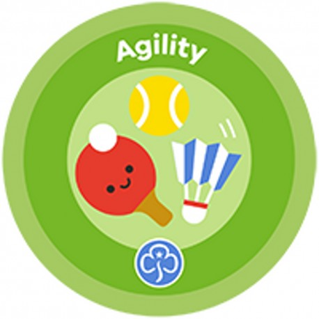 NEW Rainbow Agility Interest Badge