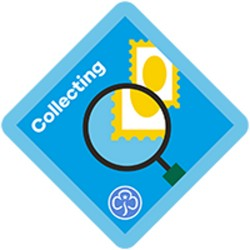 New Brownie Collecting Interest Badge