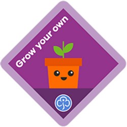 NEW Brownie Grow Your Own Interest Badge