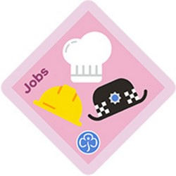 NEW Brownie Jobs Interest Badge