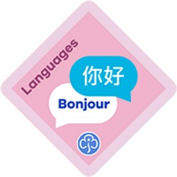 NEW Brownie Languages Interest Badge