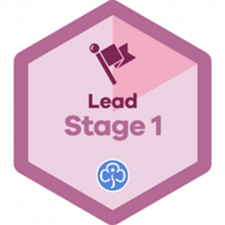 Lead Stage 1