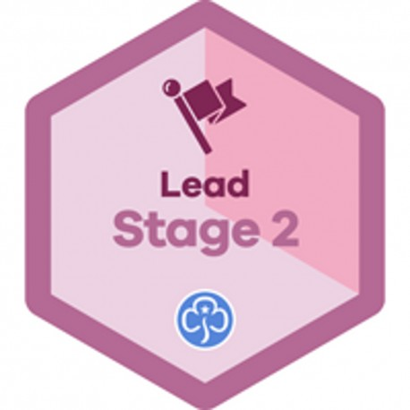 Lead Stage 2