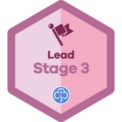 Lead Stage 3
