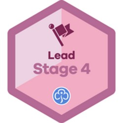 Lead Stage 4