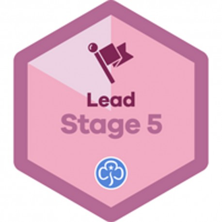 Lead Stage 5