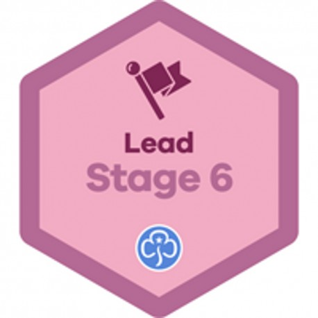 Lead Stage 6