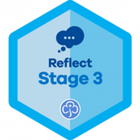 Reflect Stage 3