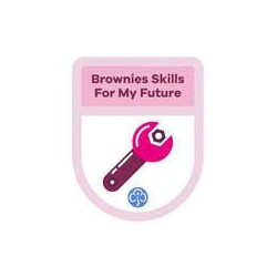 Brownies Theme Award – Skills For My Future