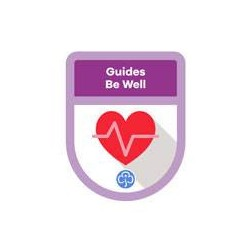 Guides Theme Award – Be Well