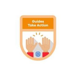 Guides Theme Award –Take Action