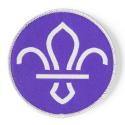 FDL Fleur de Lis Woven Fun Badge - GREY