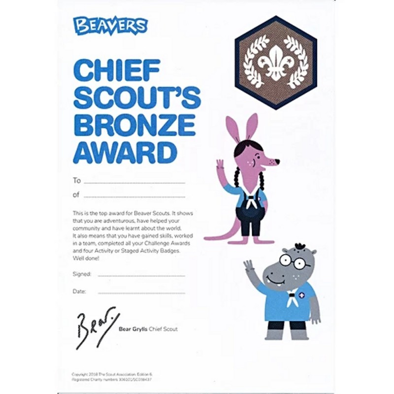 Chief Scout's Bronze Award Certificates (Pack Of 10)