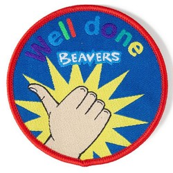 Beaver Well Done Fun Badge