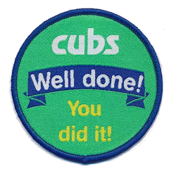 Cub Scouts Well Done Fun Badge