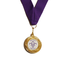 Well Done Scouts Medal