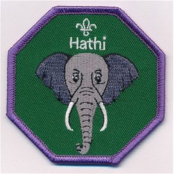 Cub Leader Fun Badge Hathi