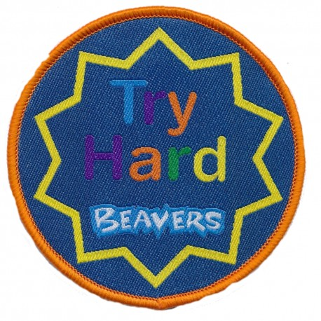 Beaver Scouts 'Try Hard' Fun Badge